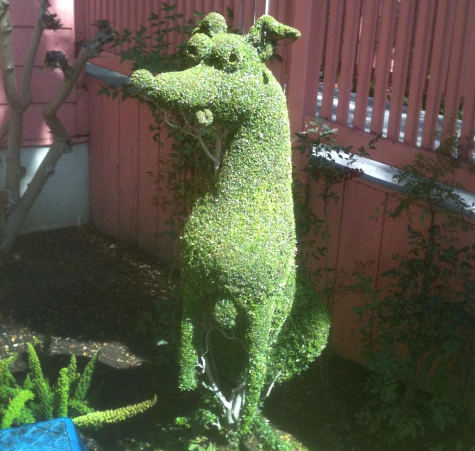 dog_topiary